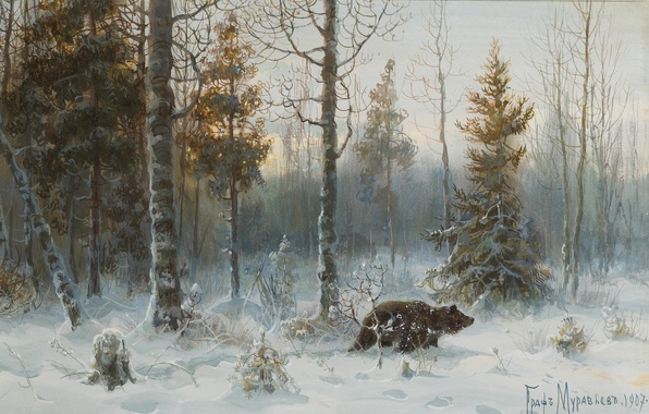 Picture winter, forest, snow, nature, picture, bear