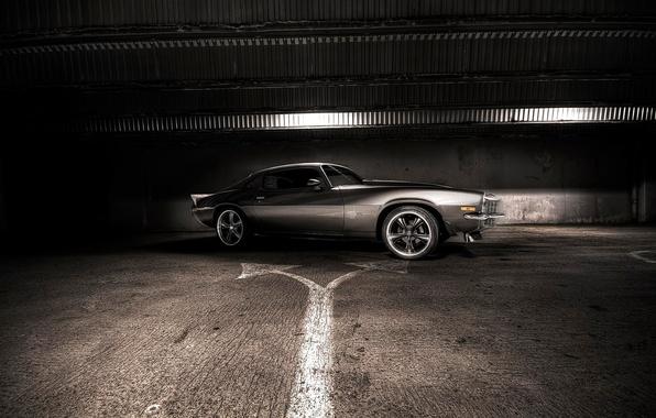 Picture light, grey, Chevrolet, Camaro, dark