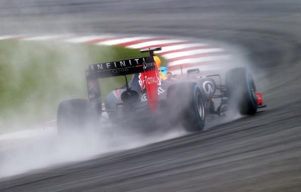 Picture rain, formula 1, red bull, vettel, sebastian, rb 10