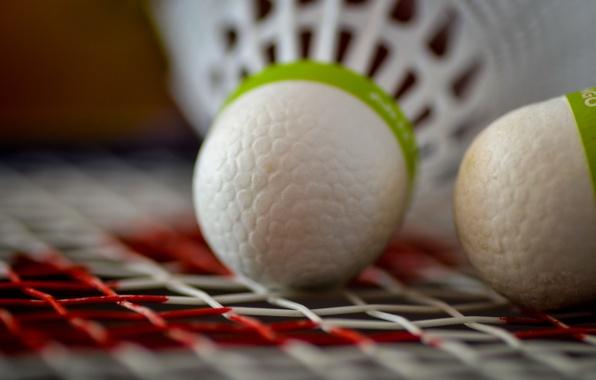 Picture macro, flounce, Badminton