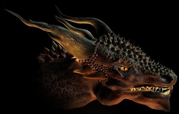 Picture fiction, dragon, art, horns, black background