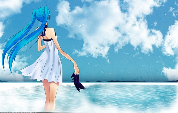 Picture sea, the sky, girl, birds, shoes, vocaloid, hatsune miku