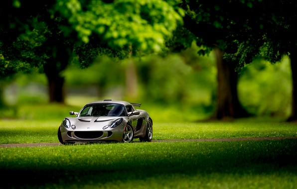Picture Lotus, Requires, front, silvery