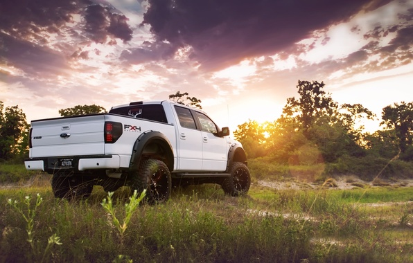 Picture white, the sky, grass, the sun, trees, tuning, Ford, Ford, jeep, SUV, rear view, pickup, ...