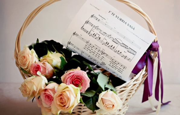 Picture flower, flowers, notes, music, basket, roses, bouquet, tape, bow, basket