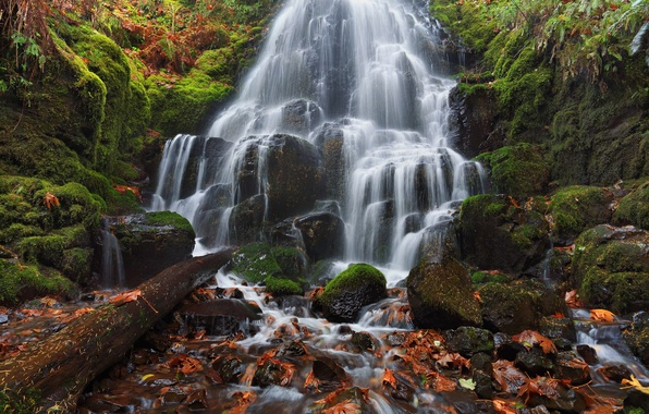 Picture autumn, leaves, stones, waterfall, moss, Oregon, cascade, Oregon, Columbia River Gorge, the Columbia river, Fairy …