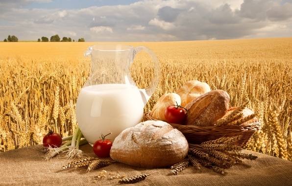 Picture wheat, field, the sky, basket, milk, bow, bread, pitcher, tomatoes, buns