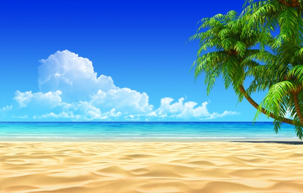 Wallpaper sand, sea, clouds, palm trees