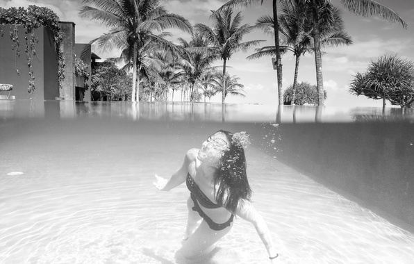Picture summer, girl, pool, bikini, the hotel, coconut trees