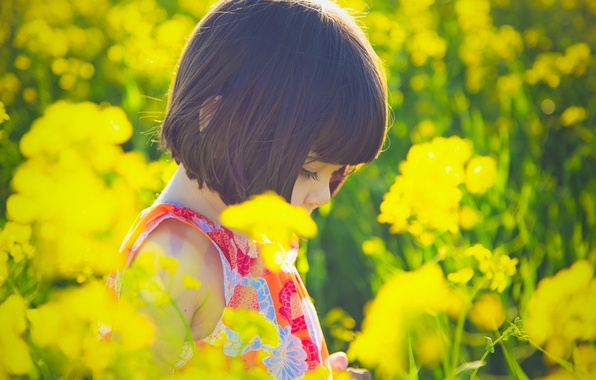 Picture the sun, flowers, yellow, nature, children, background, situation, Wallpaper, mood, plant, dress, brunette, girl, flowers, …