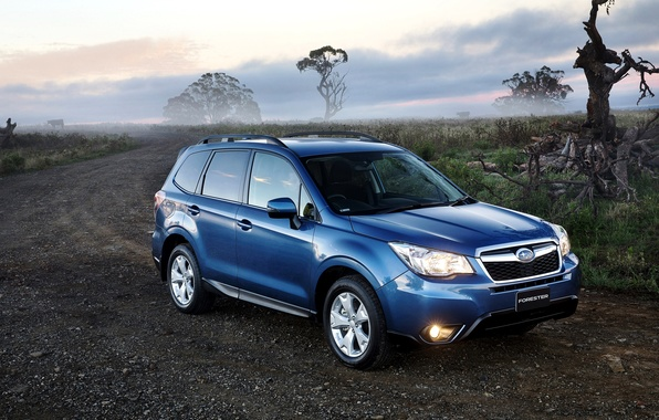 Picture road, blue, lights, Subaru, Subaru, Forester, Forester, 2014