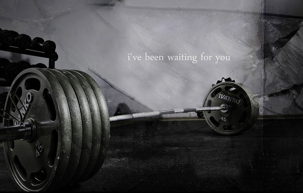Picture Rod, Bodybuilding, Gym