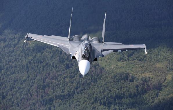 Picture forest, flight, fighter, multipurpose, double, Su-30CM