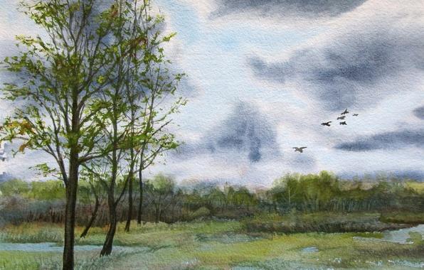 Picture the sky, trees, landscape, birds, clouds, picture, canvas