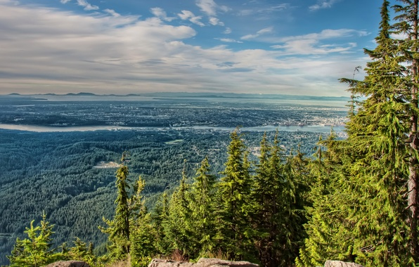 Picture forest, trees, mountains, the city, river, stones, Canada, panorama, the view from the top, North ...