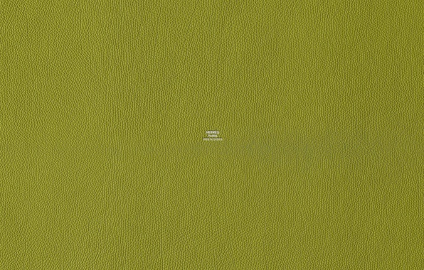 Picture green, color, texture, leather, Hermes