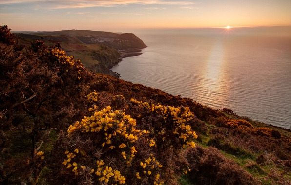 Picture sea, the sun, rocks, dawn, coast, horizon, UK, Exmoor National Park