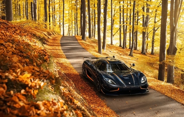 Picture autumn, background, Koenigsegg, supercar, the front, Agera, hypercar, Agera, Koenigsegg