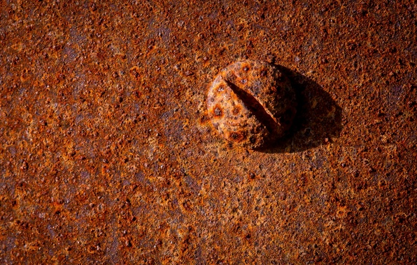 Picture macro, metal, bolt, rust