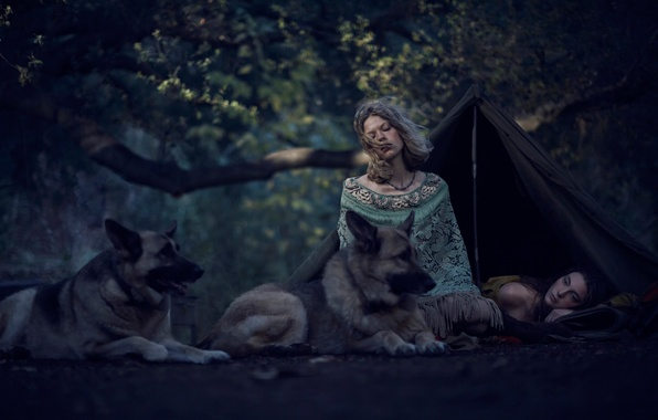 Picture forest, dogs, girls, tent, Wild, Young