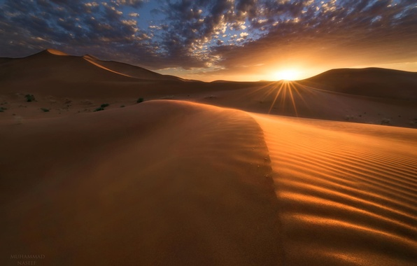 Picture landscape, sunset, desert, dunes