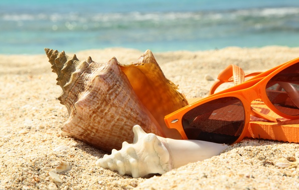 Picture sand, sea, beach, summer, stay, shell, glasses, summer, beach, sun, glasses, vacation, accessories