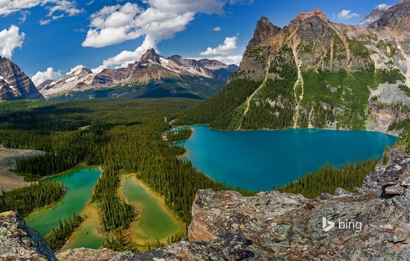 Picture trees, mountains, nature, Canada, British Columbia, lake O'hara, Yoho national Park