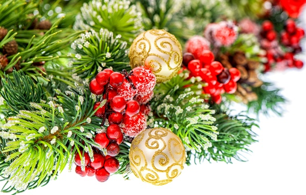 Picture balls, berries, gold, balls, pattern, toys, spruce, branch, New Year, Christmas, red, tree, white, Christmas, …
