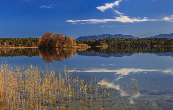 Picture autumn, forest, mountains, lake, reflection, Germany, Bayern, Germany, Bavaria, Oster Lakes
