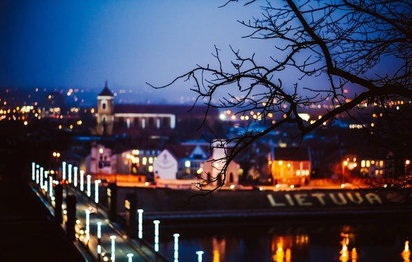 Picture road, trees, night, bridge, the city, lights, tree, branch, blur, Lithuania, Lithuania, Kaunas, Kaunas