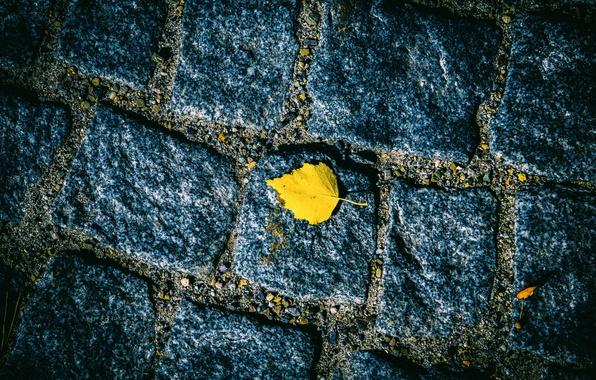 Picture road, autumn, sheet, stones, bridge