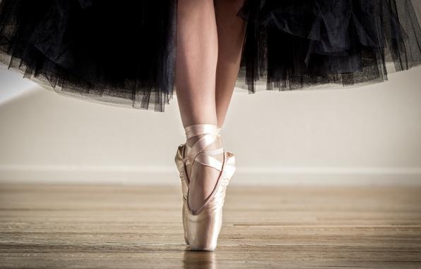 wallpaper ballerina  skirt  pointe shoes  feet images for