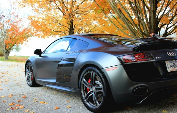 Picture machine, black, rear view, Audi R8 V10