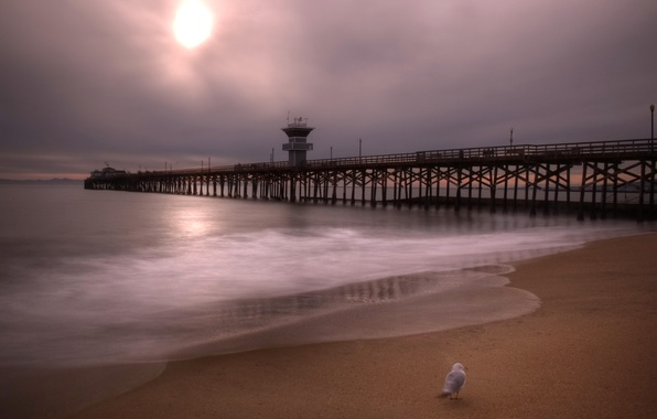 Picture sea, the sky, clouds, bird, hdr, pierce, USA, California, Orange County