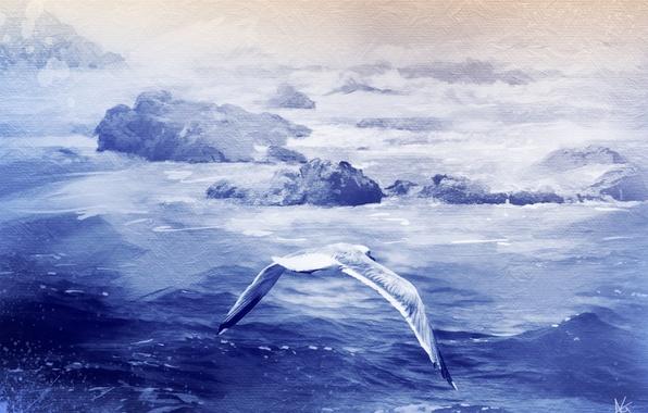 Picture sea, stones, bird, texture, Seagull