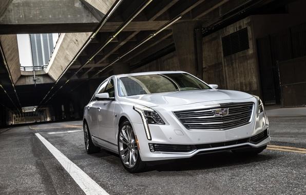 Picture white, Cadillac, sedan, Cadillac, CT6