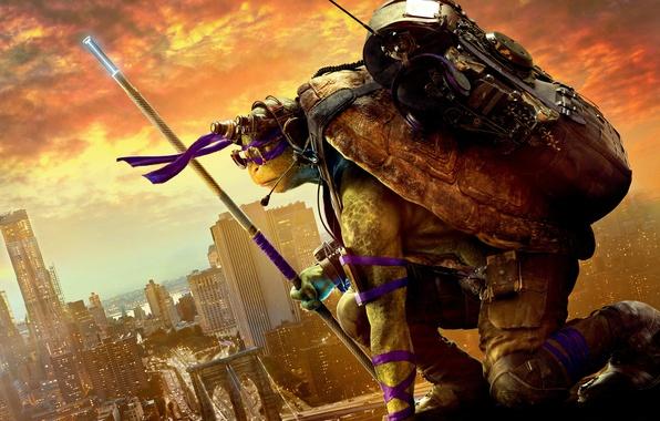 Picture the city, sunrise, height, headphones, fantasy, glasses, headband, backpack, poster, purple, Donatello, pole, equipment, Teenage …