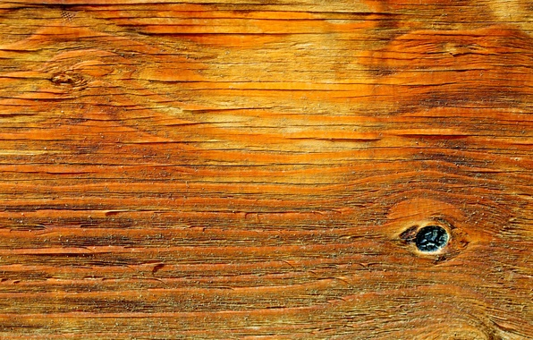 Picture background, texture, Board