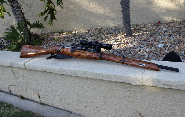 Picture weapons, rifle, sniper, Mosin, store