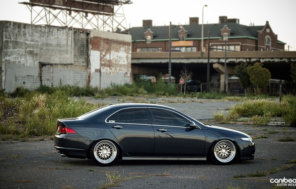 Picture tuning, drives, Acura, canibeat, Justin Wolfe, Acura TSX