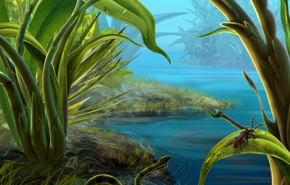 Picture water, green, snake, beetle, Grass
