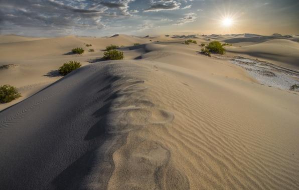 Picture sand, nature, desert, dunes, California, Death Valley, Dunes