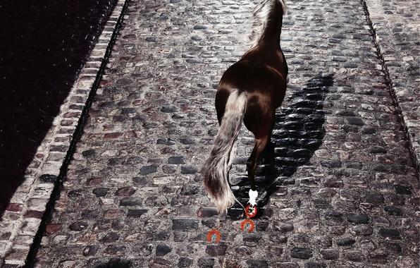 Picture Horse, pavers, horseshoe