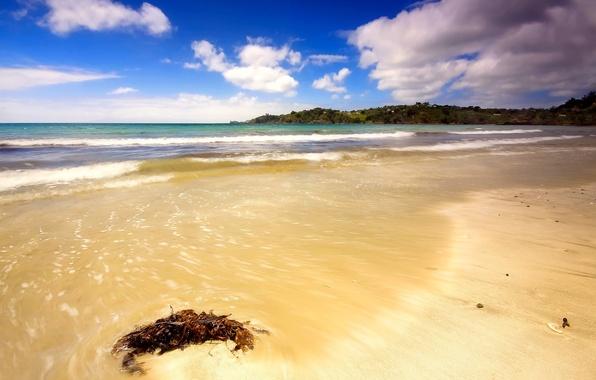Picture sand, sea, wave, beach, clouds, Shore