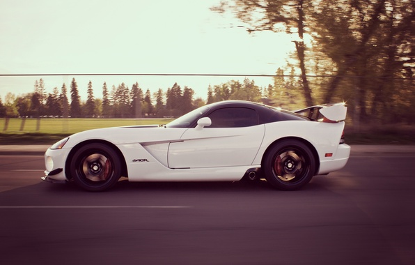 Picture road, speed, Dodge, Viper, Dodge, Viper, SRT 10