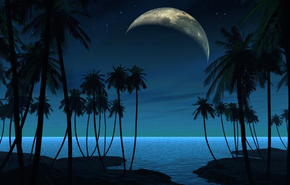 Picture landscape, night, palm trees, planet, satellite, vector