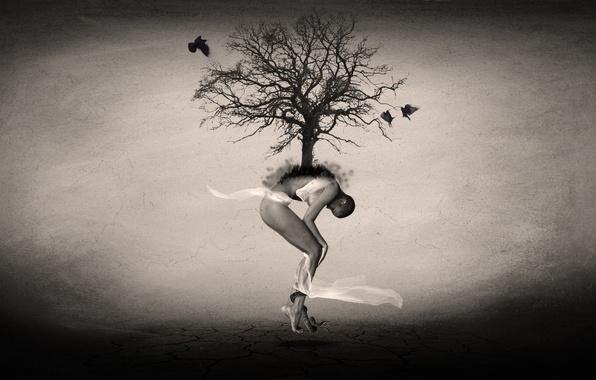 Picture birds, tree, desert, woman, people, art
