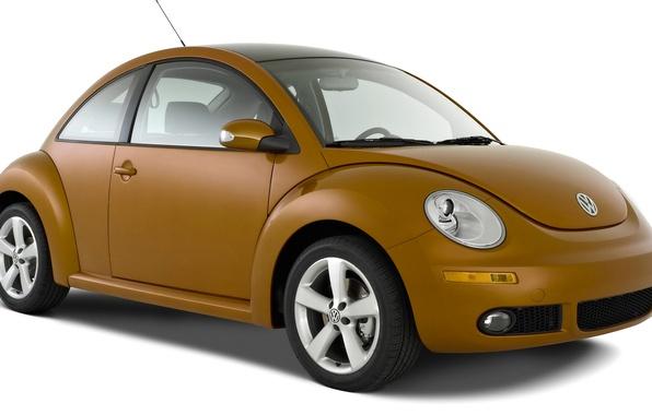Picture beetle, vector, Volkswagen