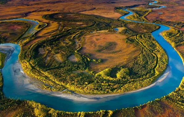 Picture trees, landscape, river, Alaska, USA, reserve, Arctic National Park
