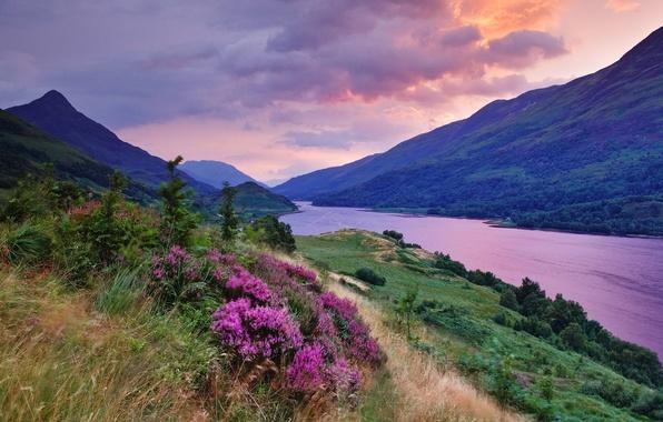Picture summer, grass, color, clouds, sunset, flowers, clouds, river, paint, plain, the saturation
